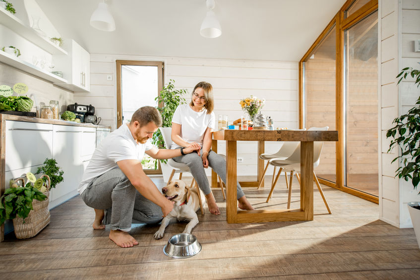 Young couple with dog at home